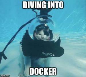 divingintodocker